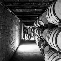 construction workers walk down the rows of bourbon barrels in a rick-house